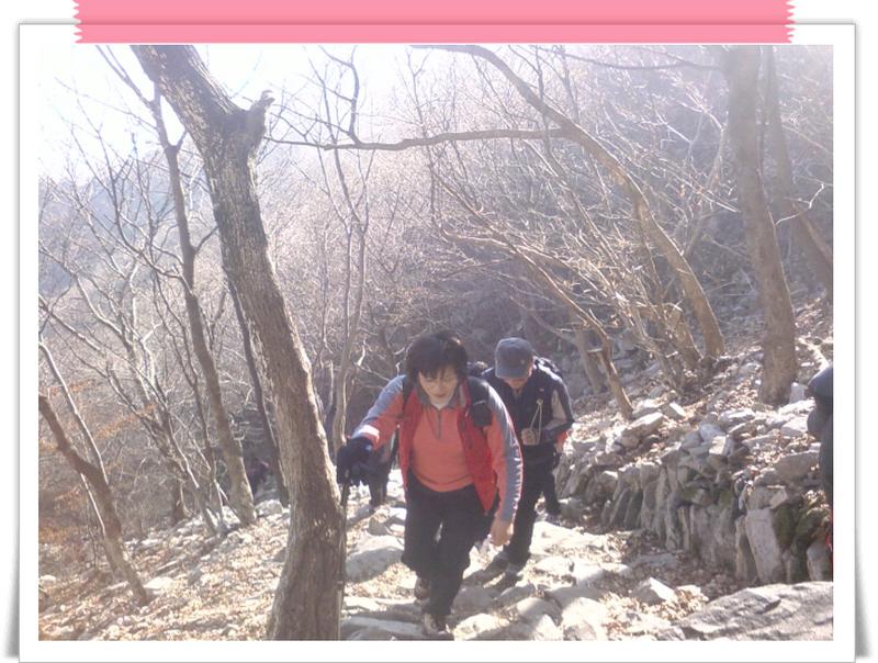 길안 아아들 하고 찾은 계룡산(2007년11월25일)